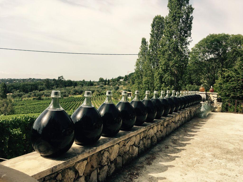 Сбор винограда в Провансе