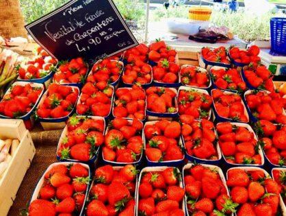 Сосчитать, сколько же праздников посвящено гастрономии в Провансе