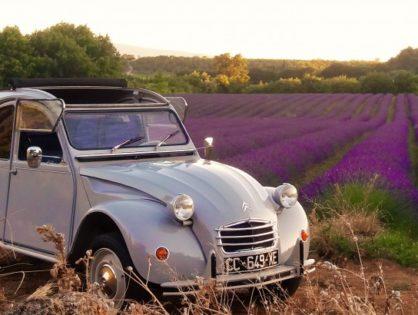 Устроить с друзьями «Ретро-Ралли» на культовых машинах Франции