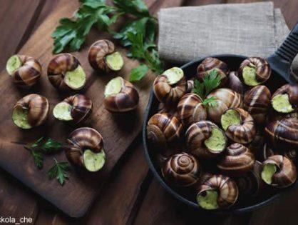 Подтвердить, что Провансальские улитки самые вкусные во Франции